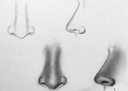 How to draw realistic nose step by step